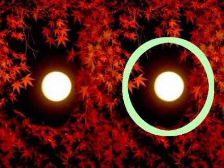日の丸構図の解説