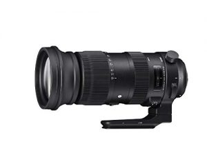 シグマ 60-600mmF4.5-6.3DG OS HSM Sports EO 60-600mmF4.5-6.3DG OS EO